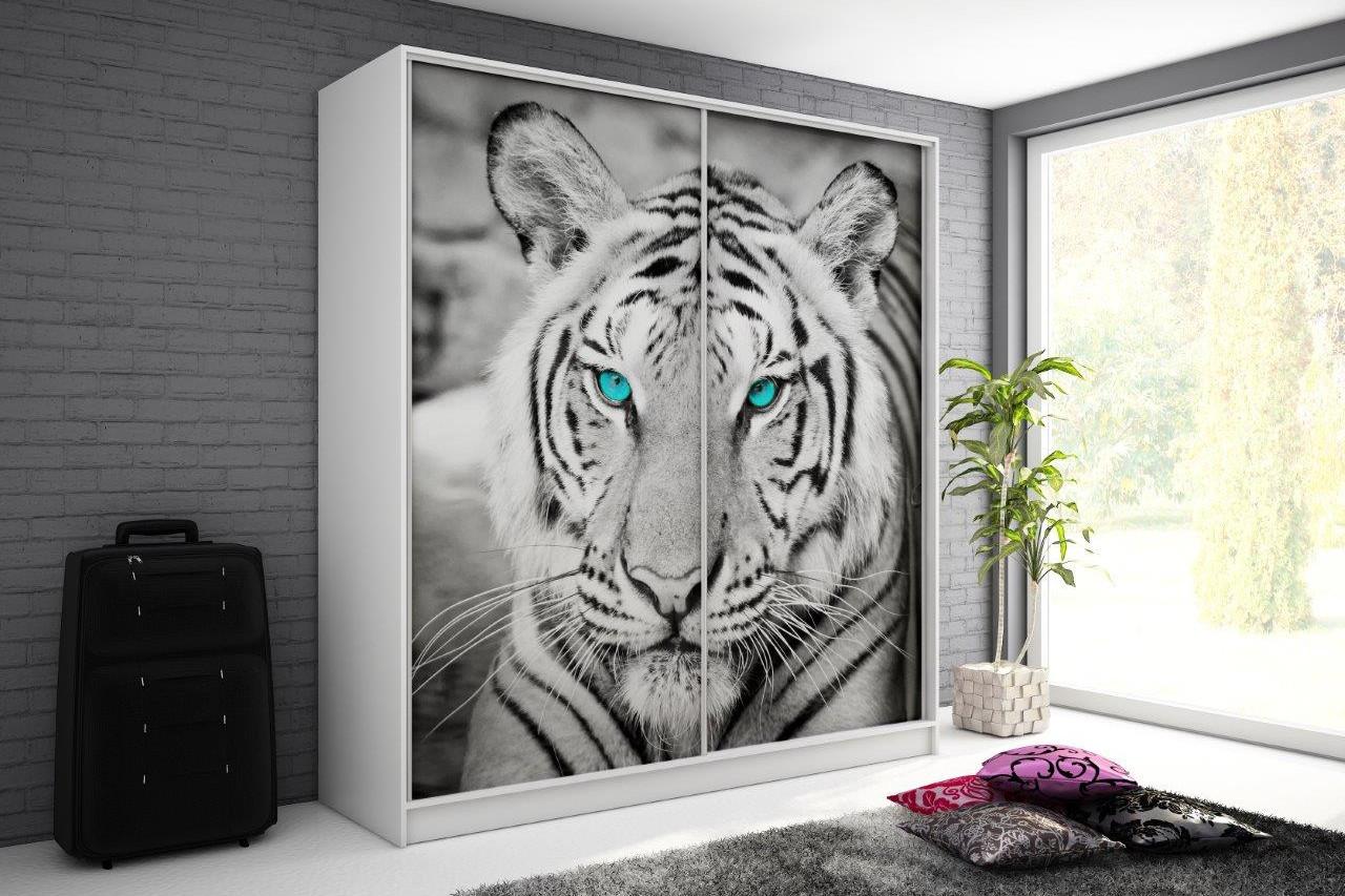 szafa tygrys